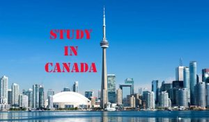Study in Canada with scholarship through Global Assistant Consulting Firm